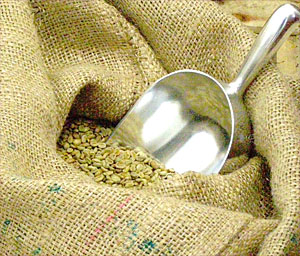 Le monde du café bio